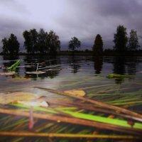 Вечер над Чёрным озером :: Лариса Чудиновских