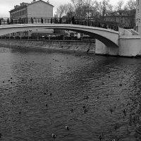 Мост :: Lenar Akhmetzyanov