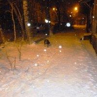 Наконец-то снег! :: Mary Коллар