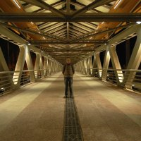 На мосту :: Алексей Привалов