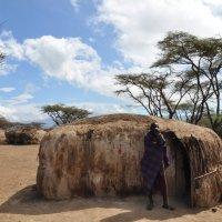 Танзания. В гостях у масаев. :: Елена Савчук