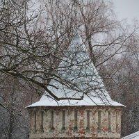 Феодоровский городок зимой.... :: Tatiana Markova