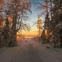 Путь к свету :: vladimir Bormotov