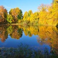 Осень :: Сергей Жиляев