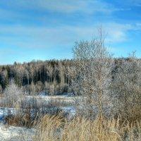 Зима на Смоленщине :: Милешкин Владимир Алексеевич