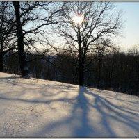 Мороз и солнце :: Андрей Заломленков