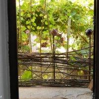 Вид из открытых дверей :: Виктор Шандыбин