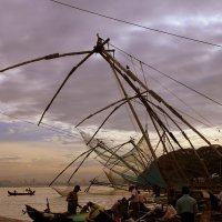 Индия,Кочин (Kochi, Cochin), :: Лара Лаби