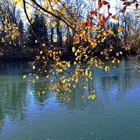 Осенний поцелуй ... :: Владимир Икомацких