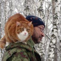 Кот как-бы гуляет :: Валерий Чепкасов