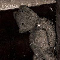 Первая игрушка: 20 лет одиночества... :: Дмитрий Шатров