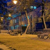 Сквер зимним утром :: Юрий Стародубцев