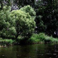 Чистые  пруды..... :: Валерия  Полещикова