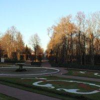Нижний парк в декабре :: Вера Моисеева