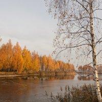 ноябрь :: александр макаренко
