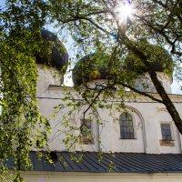 Великий Новгород. Антониев монастырь. :: Оксана Пучкова