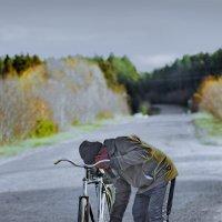 Случай в дороге :: Валерий Талашов
