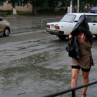 Дождик кап-кап !!! :: victor Lion