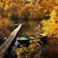 Добро пожаловать в осень :: Cергей Дмитриев
