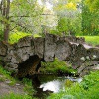 Горбатый мостик. :: Лия ☼