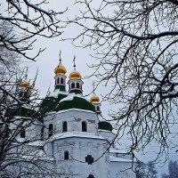 Золотые купола :: Александр Бойко