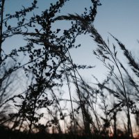 Исчезающий закат :: 고토 랜