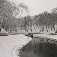 Зима долгожданная :: Владимир Зырянов