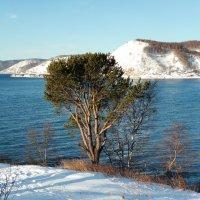 Декабрь на Байкале. :: Оксана Н