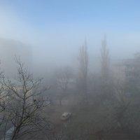 Краснодар.Спальный район. Первые заморозки :: Андрей Фиронов