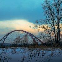 Бугринский мост. Новосибирск :: Иван Янковский