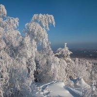 Настоящая зима :: vladimir