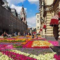 Лето ( цветы перед ГУМом)... :: Ира Егорова :)))