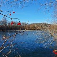 Лех в декабре.... :: Galina Dzubina