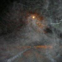 Дыхание зимы :: Виктор