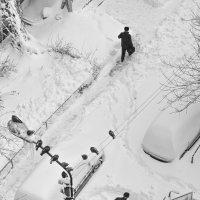Валерий Соколов - После ночного снегопада