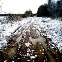 Зимнее :: Виктор Никитенко