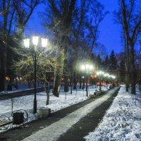 Вечерний сквер. :: юрий Амосов