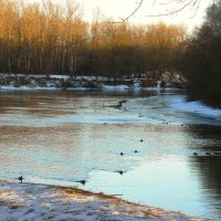 река еще не замерзла :: Леонид Натапов