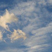 Танец на небесах :: Наталья Джикидзе (Берёзина)