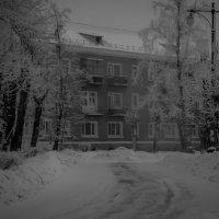 Холодает :: Алексей Обухов