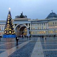 Ёлка на Дворцовой площади :: Светлана Петошина