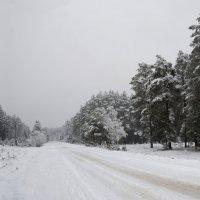 первый снег :: Николай Одегов
