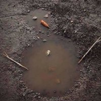 Снеговик -- будущий!!!!!!!!!!!!! : -))))) :: Валентина Папилова