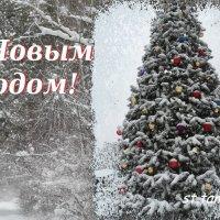 До Нового Года осталось 8 дней!!! :: Тамара (st.tamara)