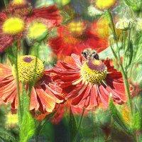 пчела :: Валерий Коноплев