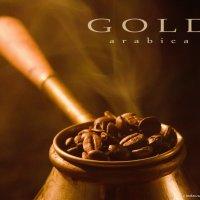 cafe :: Pasha Zhidkov