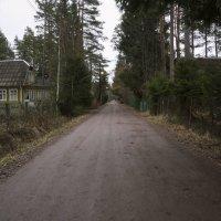 Улица в посёлке :: Aнна Зарубина