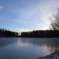 Декабрь :: Вера Щукина