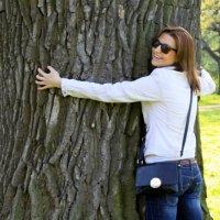 Большое дерево! :: Илья Харламов