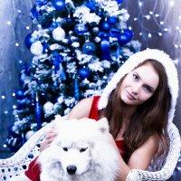 Новогодняя :: Анита Гавриш